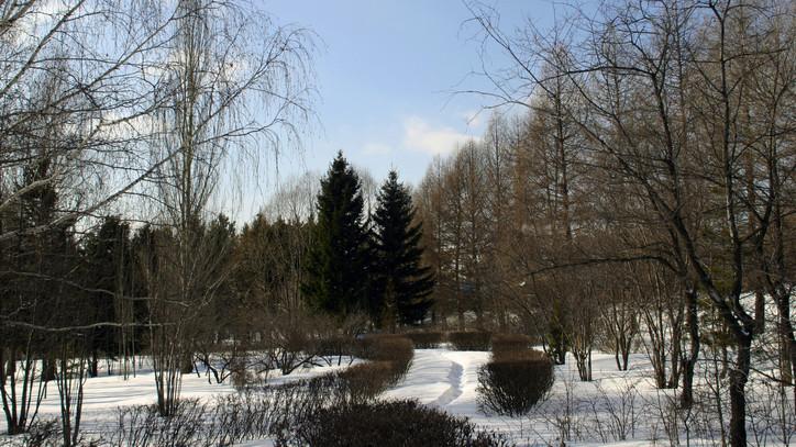 Ezt ne hagyd ki: meseszép arcát mutatja a tél ezekben a vidéki arborétumokban