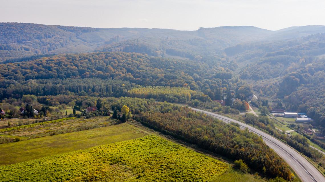 Őrült sok vállalkozó él ebben a magyar megyében: vajon mi a titkuk?