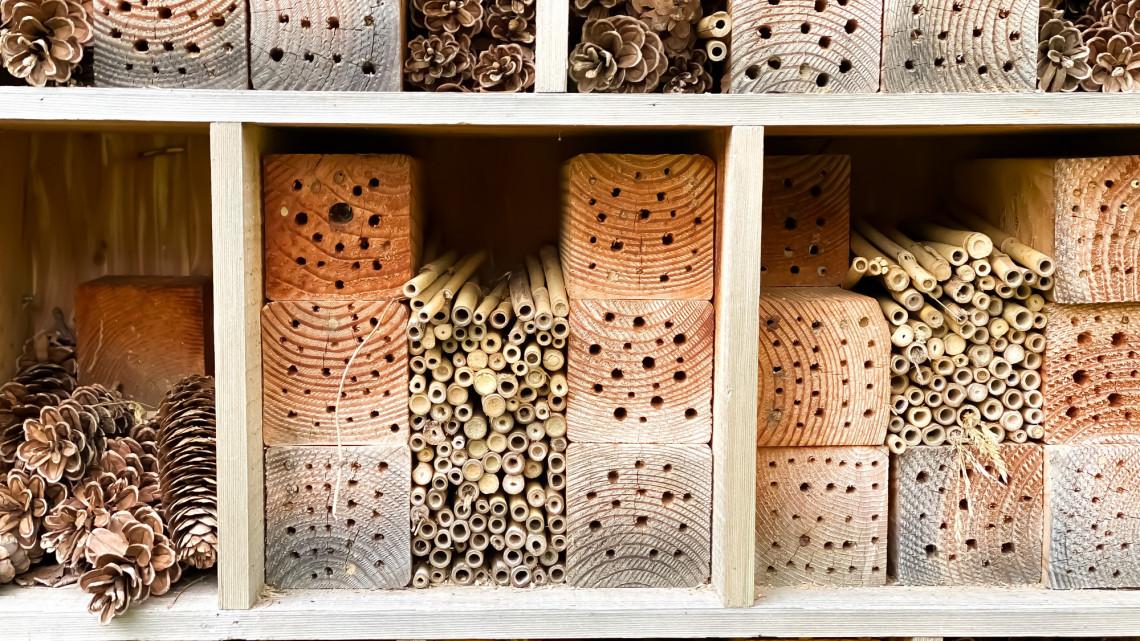 Szuper ötlet, amivel megvédhetjük a beporzó rovarokat: így készíts méhecske hoteleket!
