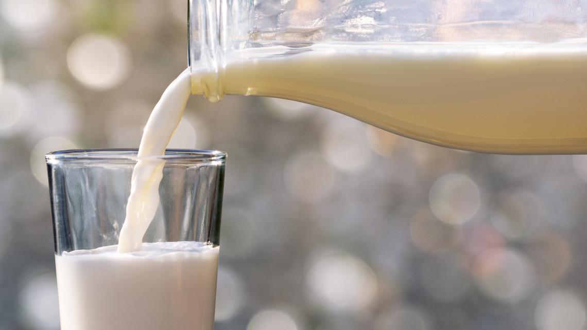 Kiderült: nyártól emelnek a tej és a tejtermékek árán, ezért van rá szükség