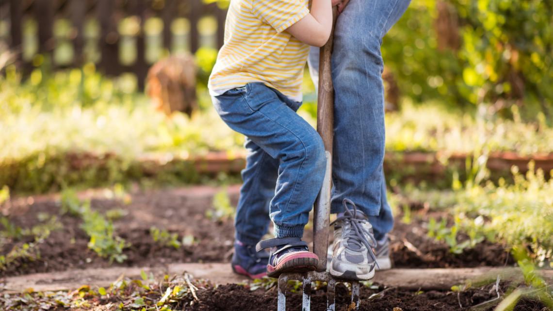 Ezek a legfontosabb kerti munkák márciusban: itt a 6 pontos feladatlista