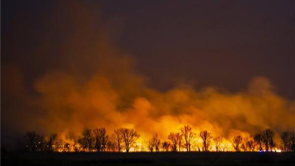 Sokkoló: elképesztő intenzitású tűz tombolt a nádasban, ami után csak hamu maradt