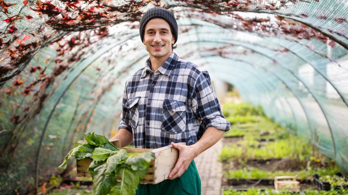 Fiatal agrárosok figyelem: milliókat nyerhettek ezen az ösztöndíjpályázaton