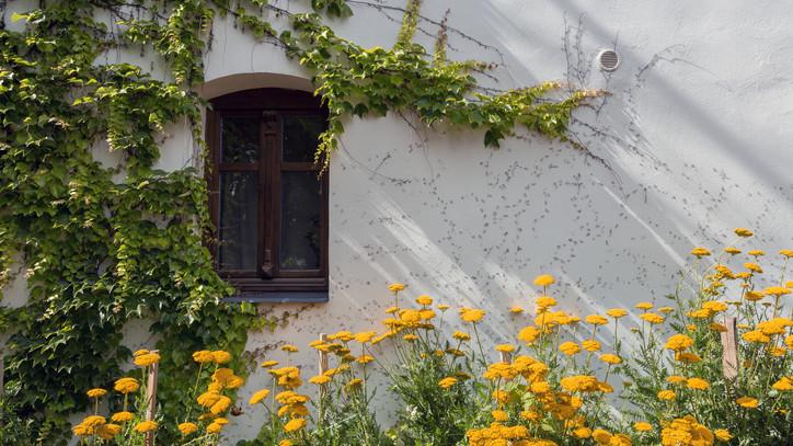 Magyar falu program: ingatlanfejlesztésre is pályázhatnak az önkormányzatok