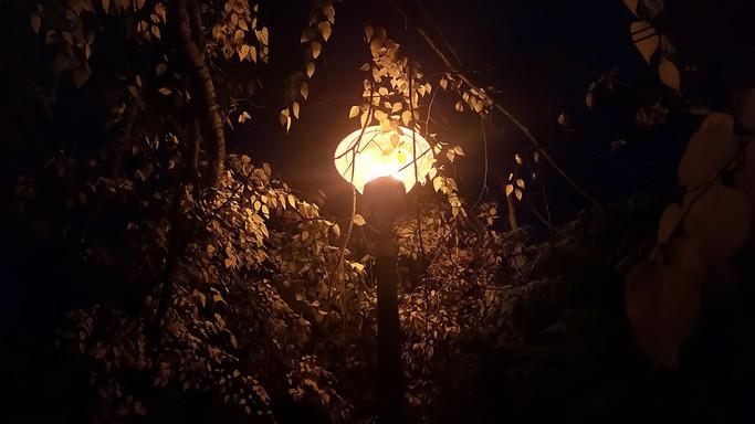 Korszerűsítés kezdődik Békéscsabán: okosítják a fényforrásokat a városban