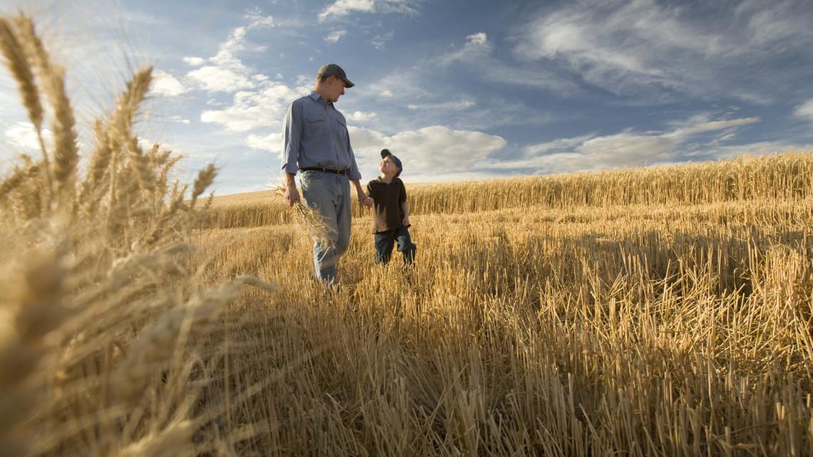Rekordösszegű támogatást kapnak a gazdák: mutatjuk, mire jár a pénz