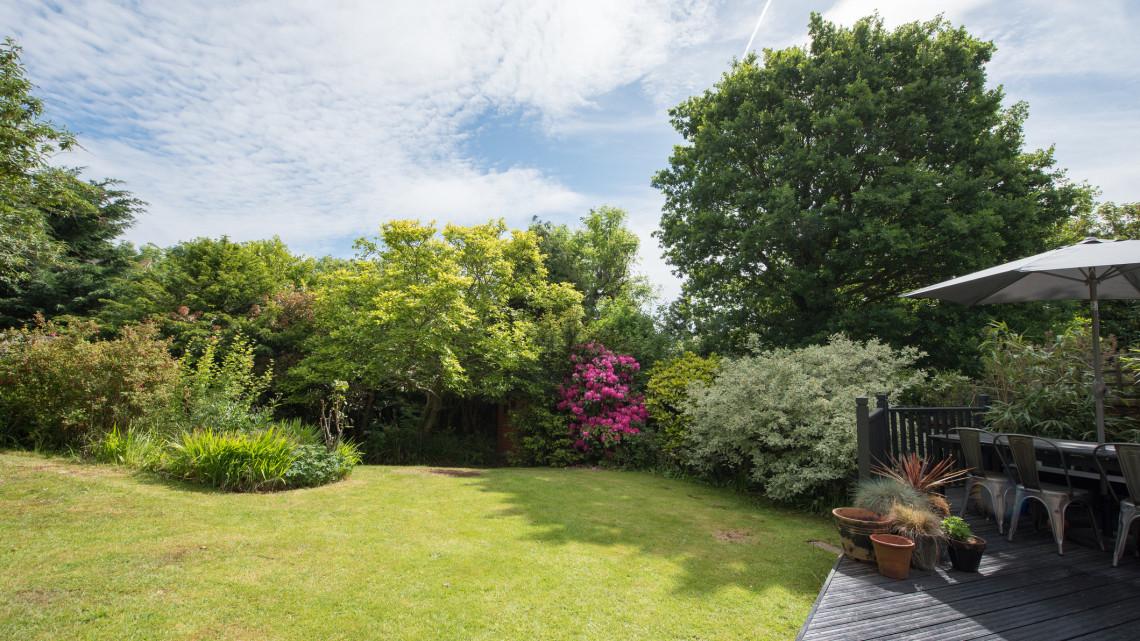 Itt vannak a legjobb tippek: így lehet egész nyáron bámulatos a gyep a kertben