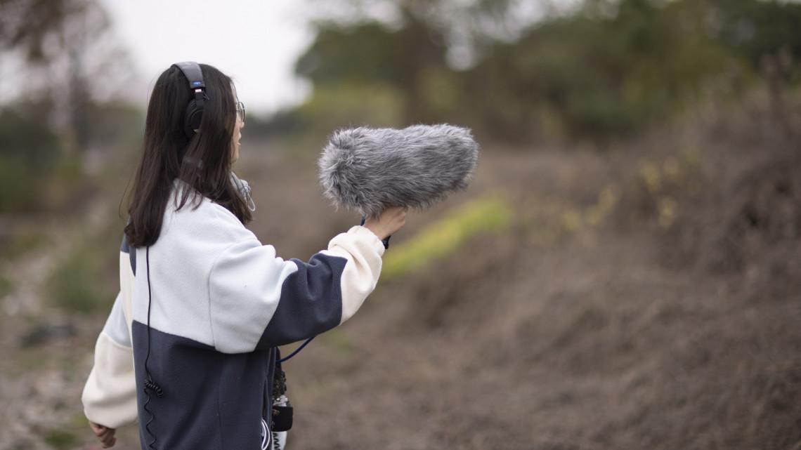 Itt a bizonyíték: a zajszennyezés hosszú távon még a fák számára is kockázatos