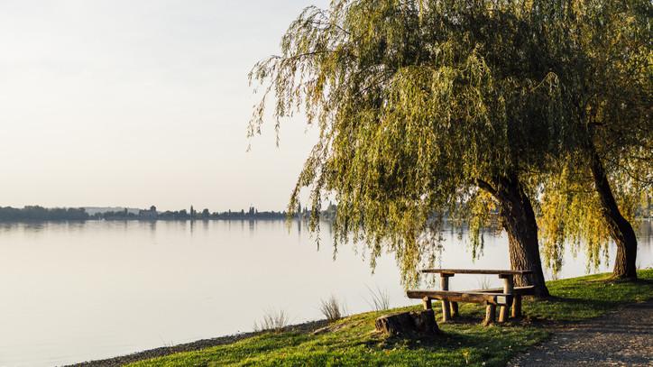Kerékpáros kikapcsolódás: tematikus élménytúra indul a Velencei-tó körül