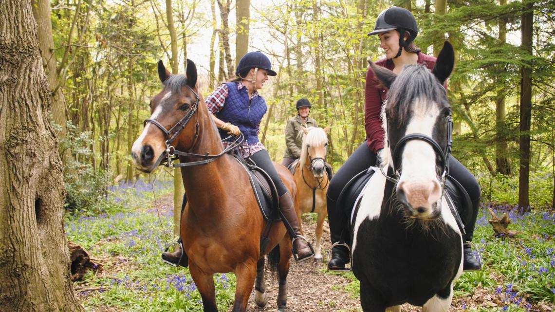 Elvinnéd a gyereket lovagolni? Ennyibe kerül egy óra a lovasiskolákban 2021-ben