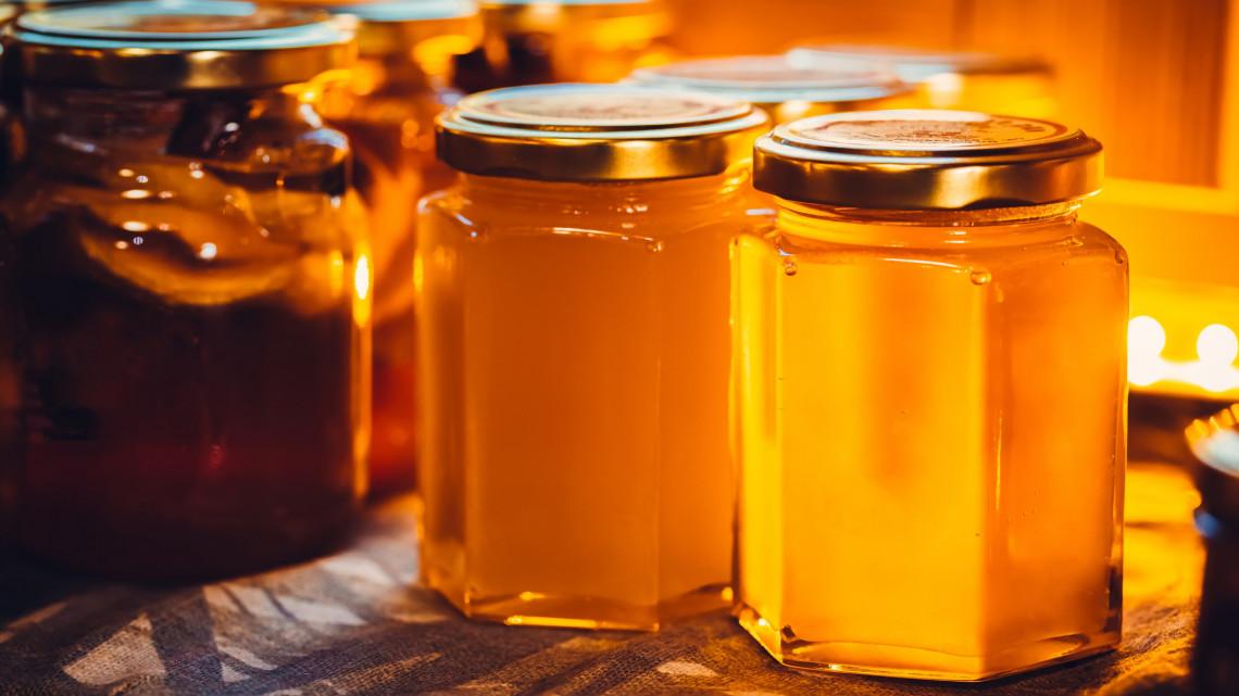Ennek sok magyar méhész örülhet: egyedülálló klímavédelmi lakossági termék indul