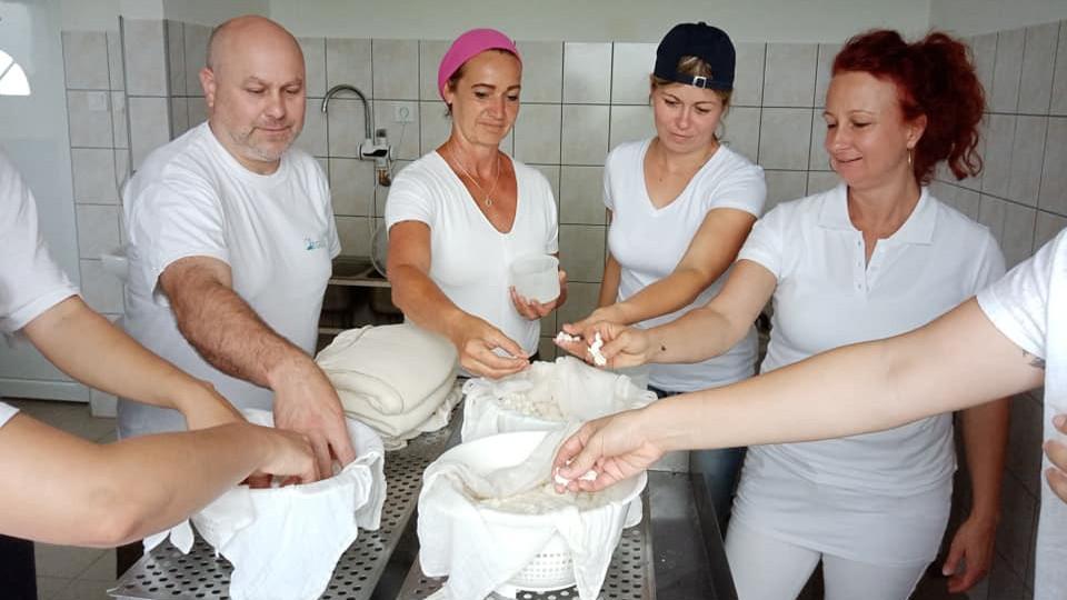 Egyre többen esznek ilyen sajtot Magyarországon: laktózérzékenyek is fogyaszthatják