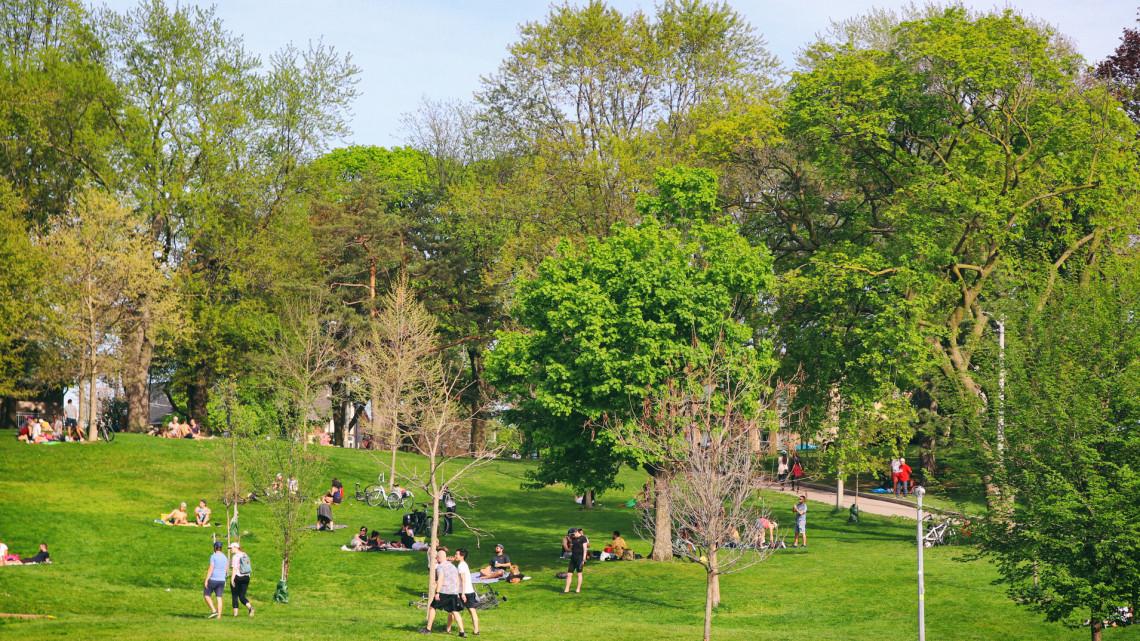 Óriási beruházás: megmentették a fákat ebben a most átadott közparkban