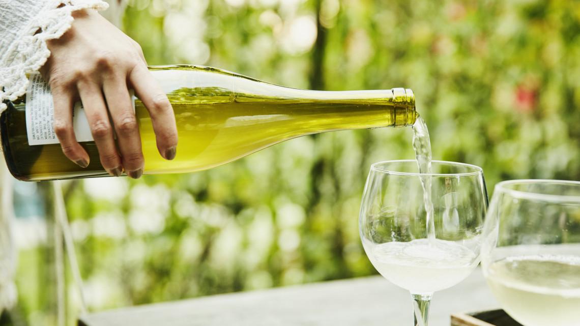 Hatalmas dicsőség: rangos díjjal ismerték el ezeket a minőségi magyar borokat