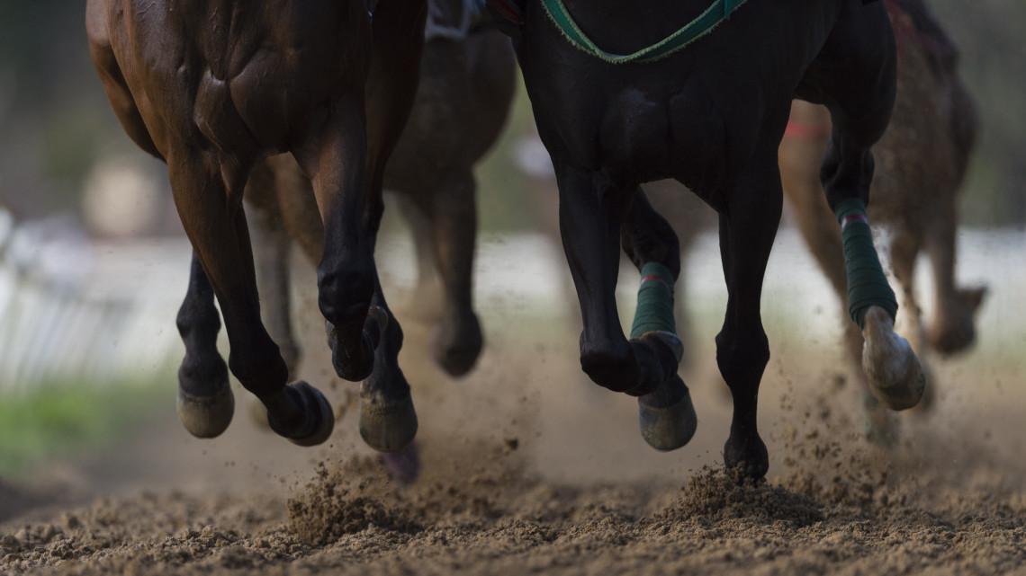 Jó hír a lovassport hódolóinak: egész hétvégén szurkolhatnak itt kedvenceiknek
