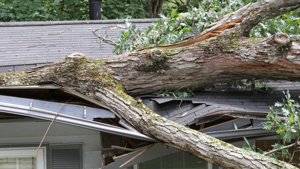 Extrém szélviharokra számíthatunk: szörnyű károkat okoz a változás