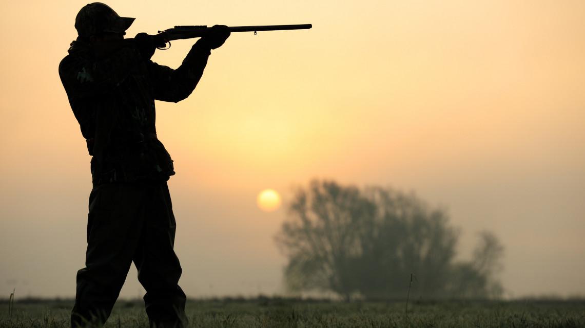 Elkeserítő trend: védett madarak ezreit veszélyeztetik ezek a légpuskások