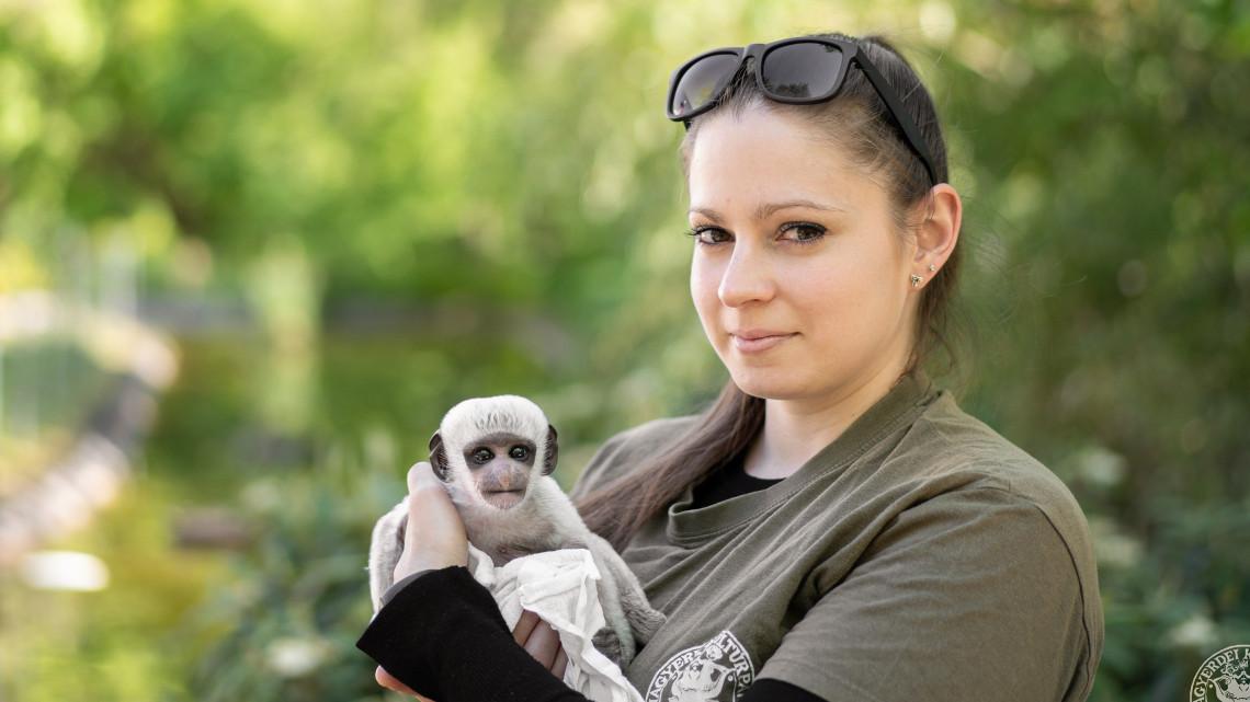 Nála cukibbat ma nem látsz: eszméletlenül aranyos a vidéki állatkert aprósága
