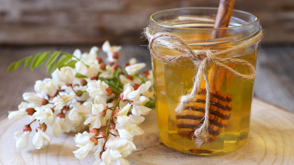 Súlyos a helyzet: nehéz év vár a méhészekre, komoly hiány lehet akácmézből