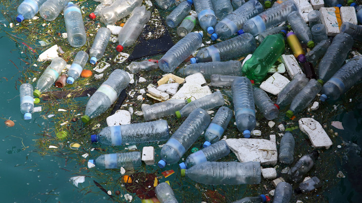 Brutális mennyiségű hulladékot szedtek ki a Szamosból: innen jött a temérdek szemét