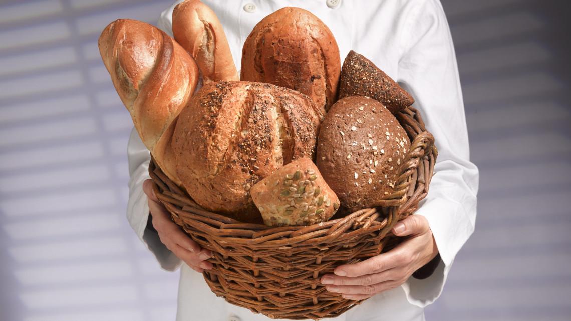 Hány kalória egy szelet kenyér? Fehér kenyér kalória, teljes kiőrlésű kenyér kalória, pirítós kenyér kalória