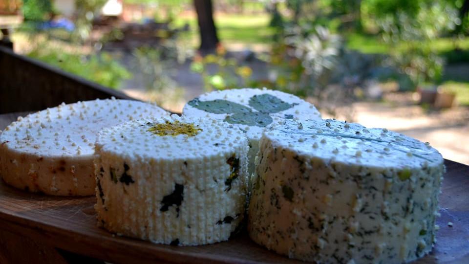 Csak a tartalékaik segítettek: alig élték túl a járványt a kézműves sajtkészítők