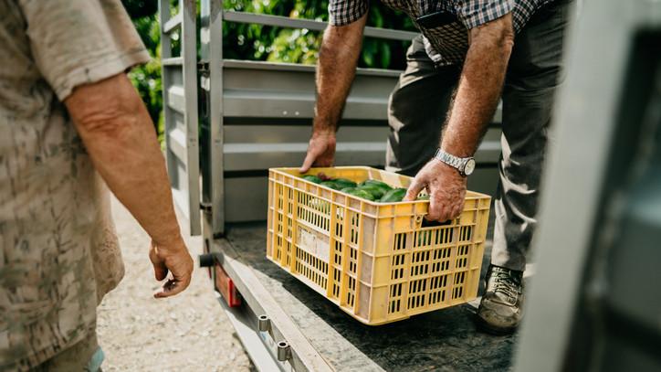 Brutális fogás: hétszáz kiló jelöletlen zöldséget talált a NAV