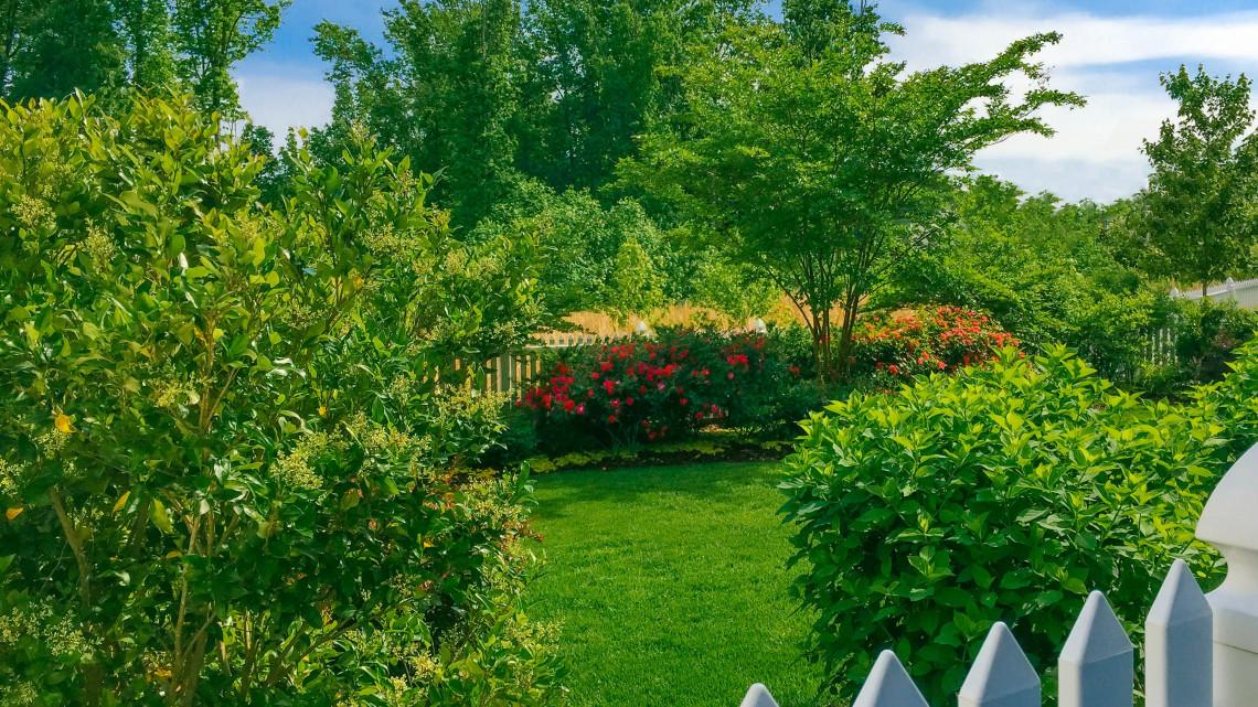 A szomszéd gyepe mindig zöldebb? 10+1 praktika, amitől egész nyáron szép lesz