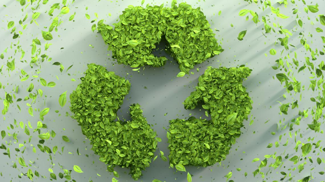 Egyre ritkábban választjuk a műanyagot: nő a környezettudatosság a lakosság körében