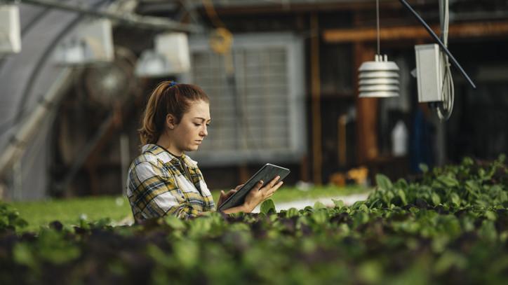 Milliárdos támogatás: digitális átállásához kapcsolódó fejlesztésekre pályázhatnak a gazdák