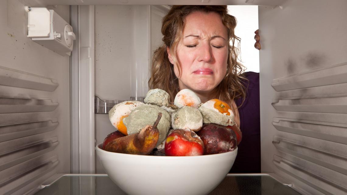 Tízezrek mennek a kukába, ha nem figyelsz: ezt a 12 dolgot soha ne rakd a hűtőbe!