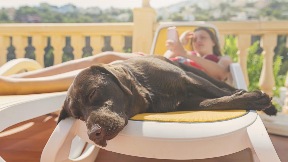 Durvul a kánikula: figyelem, mától él a hőségriasztás, de etrém az UV-B-sugárzás is