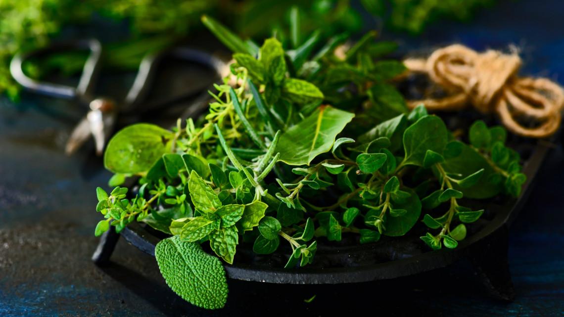 Kiderült a nagy fűszer-titok: ezt mindenképp tudnod kell a bolti növényekről