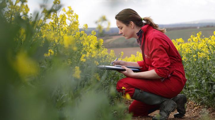 Jövőre is lesz mire pályázni a gazdáknak: 2022-ben új ökológiai támogatás indul