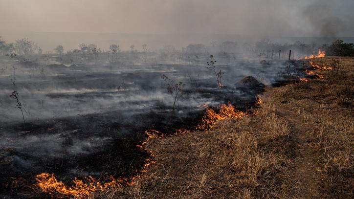 Ezt minden gazdának be kell tartani: ezek a legfontosabb szabályok, így előzd meg a mezőgazdasági tüzet