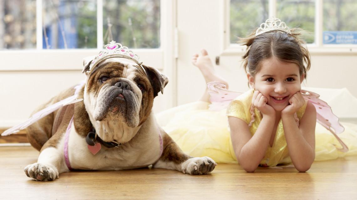 Lassan igazi luxus lesz kutyát, macskát tartani: erre kevesen számítottak 2021-ben