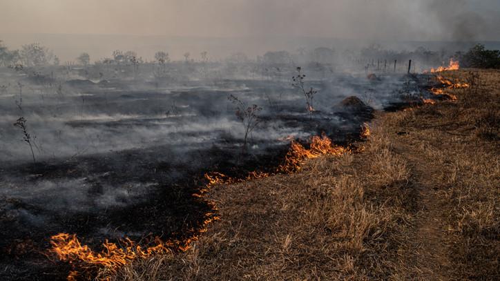 Brutális pusztítást végzett a tűz: 300 hektárnyi száraz fű és ősgyep égett le az Alföldön