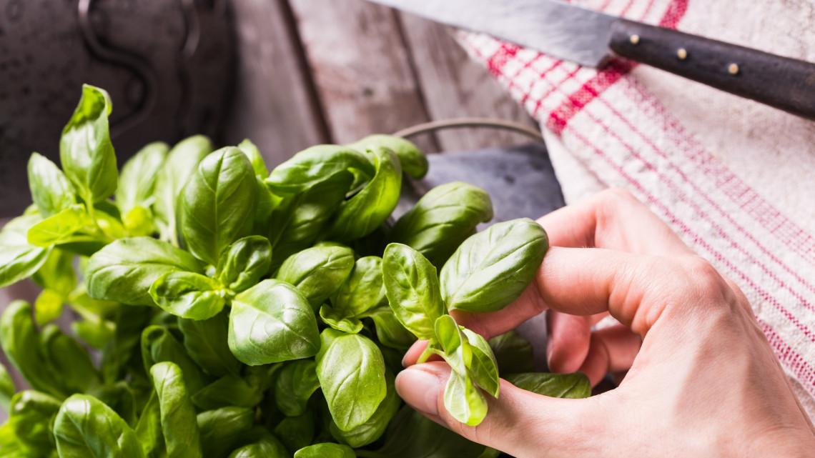 Fogadjunk, hogy ezt nem tudtad a boltokban kapható fűszernövényekről: nem minden az ár