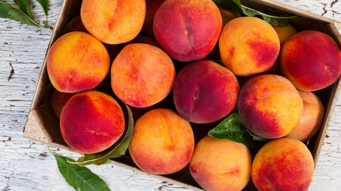 Ez is veszélyezteti a hazai gyümölcstermést: nem fogod kitalálni, mi az