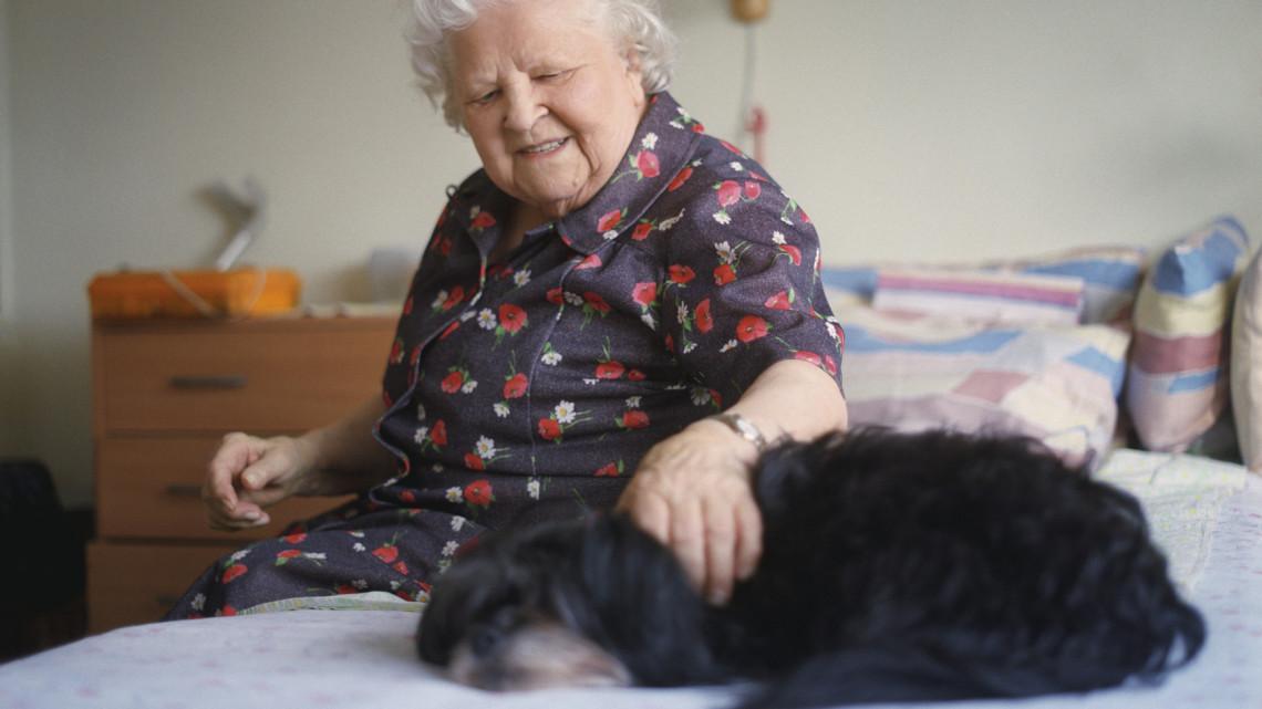 Elképesztő felfedezésre jutottak: a segítségükkel kiszűrhető a demencia