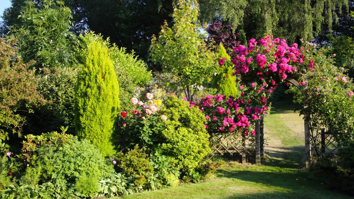 Összefogtak a magyarok és a szlovákok: megújult a vidéki város botanikus kertje