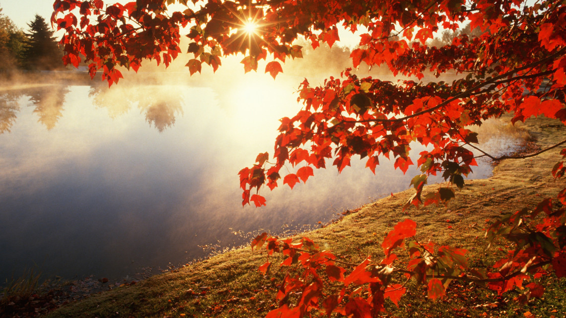 Hivatalosan is itt az ősz: százezrekkel fizetünk rá, ha most derül ki, rossz a kazán