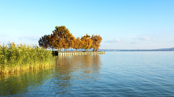 Súlyos a helyzet a Balatonnál: veszélyben a magyar tenger, azonnal cselekedni kell!