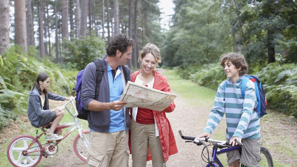 Melyik legyen az év erdei kerékpárútja? Itt a legjobbak listája, amiből szavazni lehet
