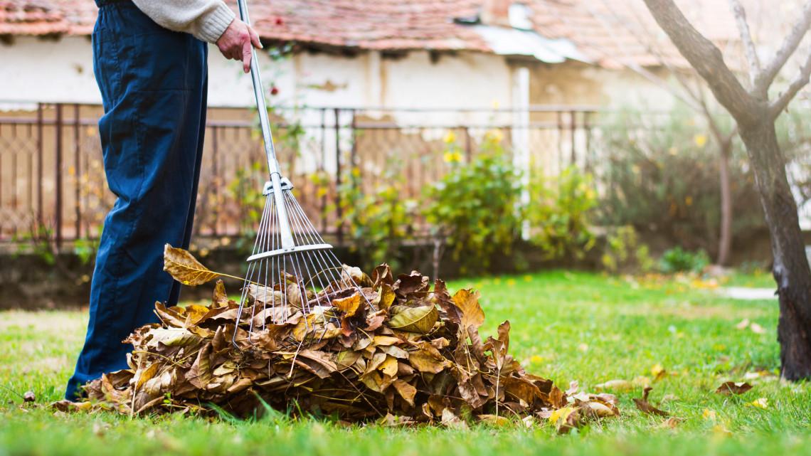Ezt egy kerttulajdonos sem úszhatja meg: itt a 7+1 pontos feladatlista októberre