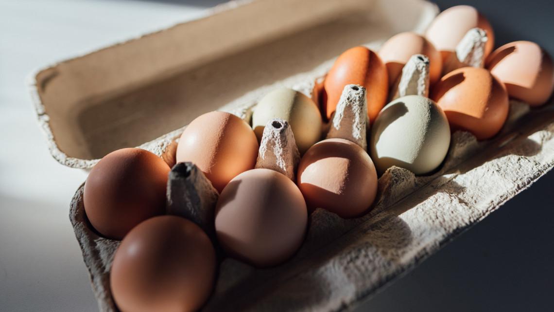 Elismerik a legkiválóbb magyar termékeket: a minőség az elsődleges szempont