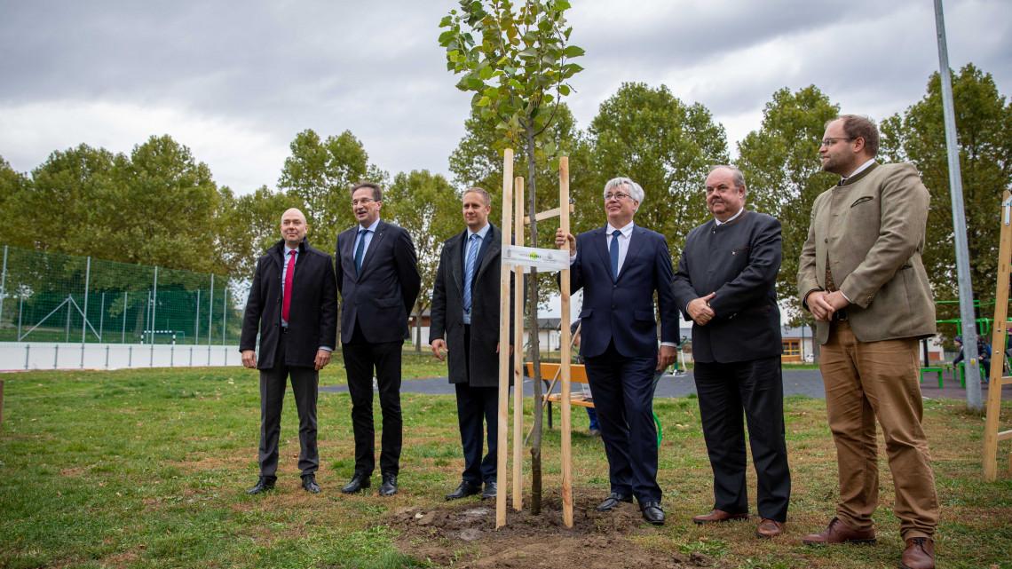 36 ezer sorfa elültetését tervezik két év alatt: így folytatódik a települések zöldítése